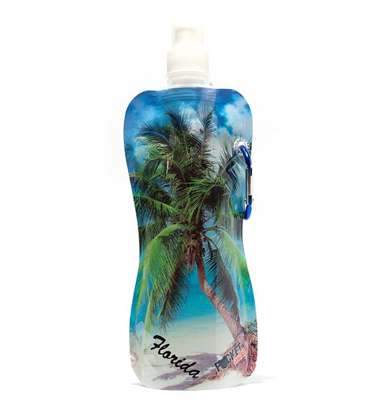 Eppler Beach Sunny Pocket Water Bottle by Breakwater Bay