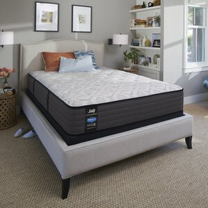 Sealy Response? Performance 12.5