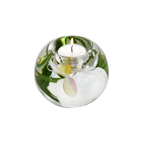 Phalaenopsis Orchid Glass Tealight by Bloomsbury Market