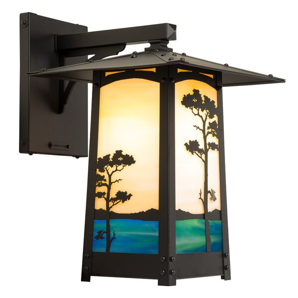 Dever Monterey Pine Large Outdoor Wall Lantern by World Menagerie