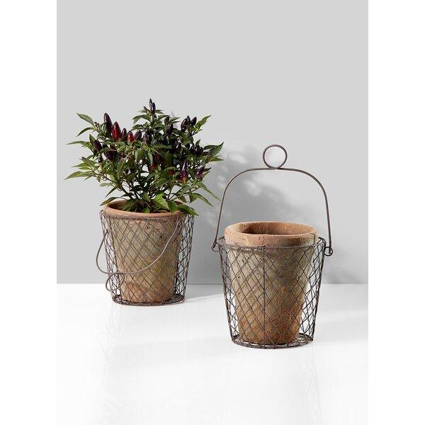Belmonte Moss-Clay Pot Planter by Fleur De Lis Living