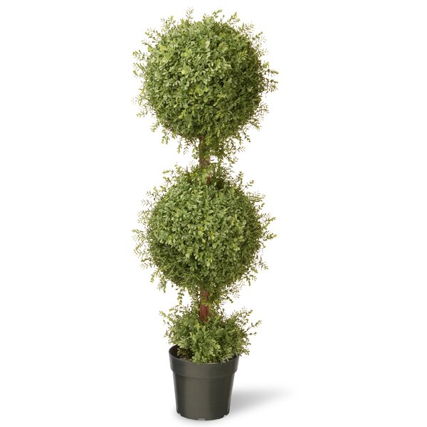 Tea Leaf Mini 2-Ball Topiary in Pot by National Tree Co.
