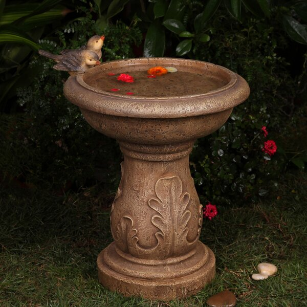 Classical Garden Birdbath by Jeco Inc.