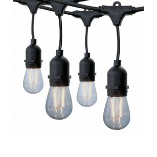 Inexpensive Chicoine 7 Light Novelty String Light By Williston Forge
