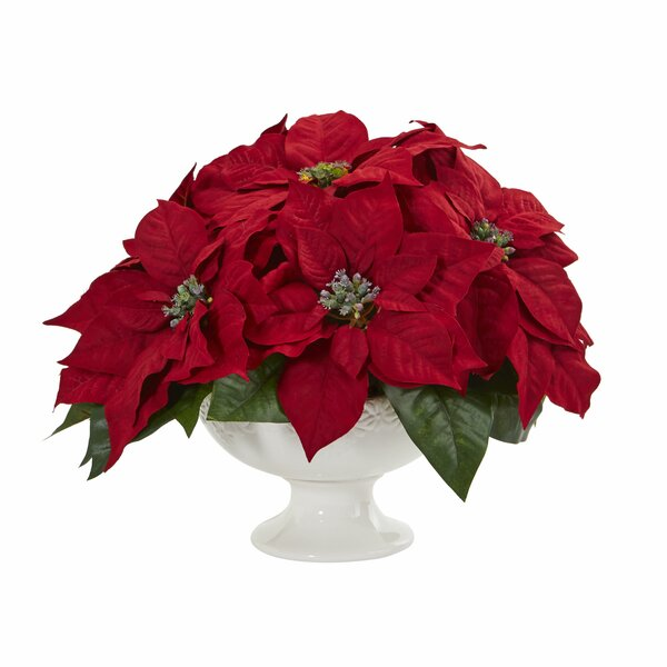 Poinsettia Floral Arrangement Plant in Urn by Charlton Home