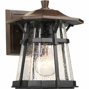 Best Price Triplehorn 1-Light Outdoor Espresso Wall Lantern By Alcott Hill
