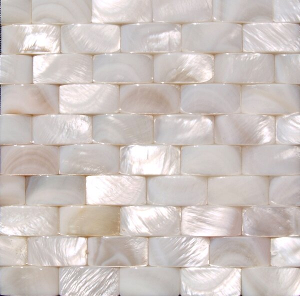 1 x 12 Shell Seamless Three Dimensional Basketweave Liner Tile in White Mother of Pearl (Set of 11) by Matrix-Z