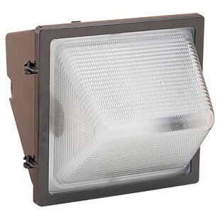 Inexpensive Perley 1 Head Outdoor Floodlight By Darby Home Co