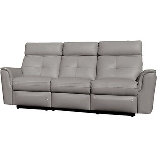 Alexia Reclining Sofa Latitude Run