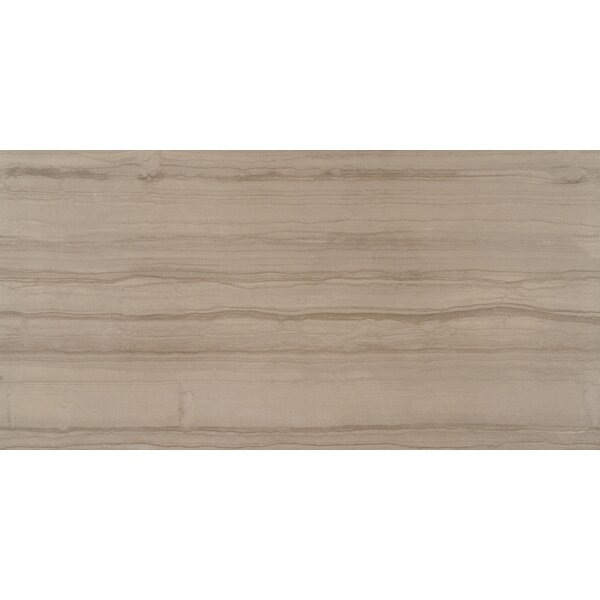 Sophie Maron 12 x 24 Porcelain Wood Look Tile in Brown by MSI