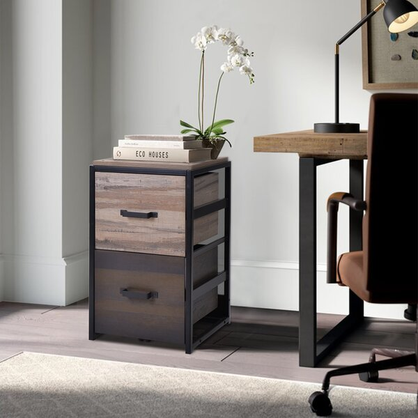 Amiyah 2-Drawer Vertical Filing Cabinet