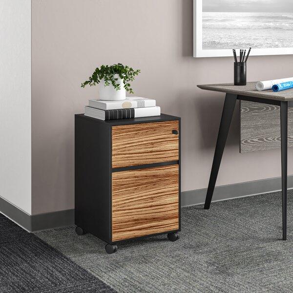 Waldrup 2-Drawer Mobile Vertical Filing Cabinet