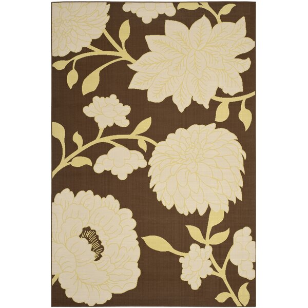 Hampton Brown/Ivory Outdoor Area Rug by Safavieh