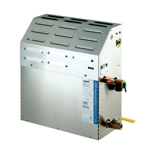 Tempo 15 kW Steam Generator by Mr. Steam