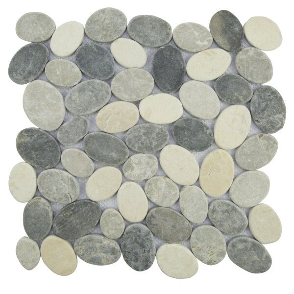 Coin Random Sized Natural Stone Pebble Tile in Sterling/Gray by Pebble Tile