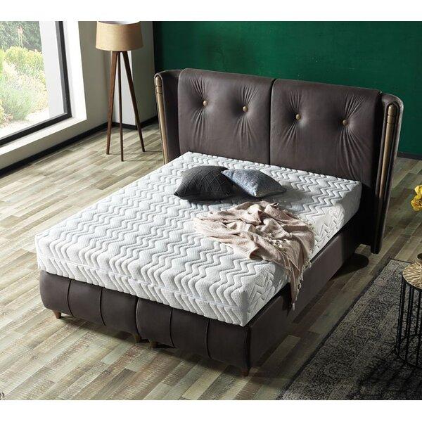Olga Queen Storage Sleigh Bed by Brayden Studio