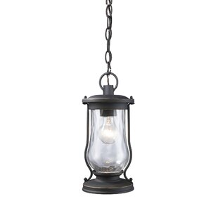 Reviews Crutchfield 1-Light Outdoor Hanging Lantern By Breakwater Bay