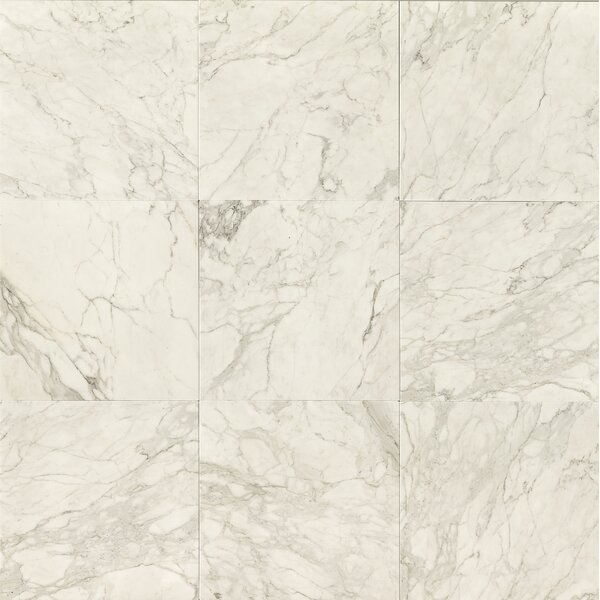 18 x 18 Marble Polished Tile in Calacatta Oro