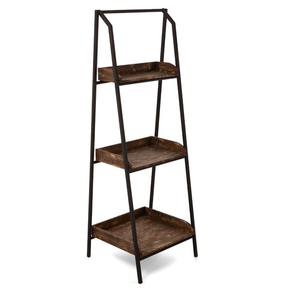 Moroney Ladder Bookcase by Williston Forge