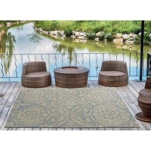 Crown Point Oriental Hand-Tufted Glacier Blue/Linen Indoor / Outdoor Area Rug