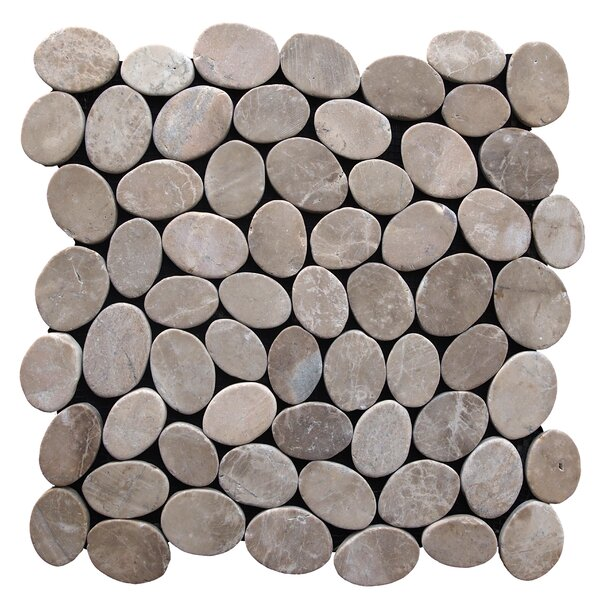 Coin Random Sized Natural Stone Pebble Tile in Tan by Pebble Tile
