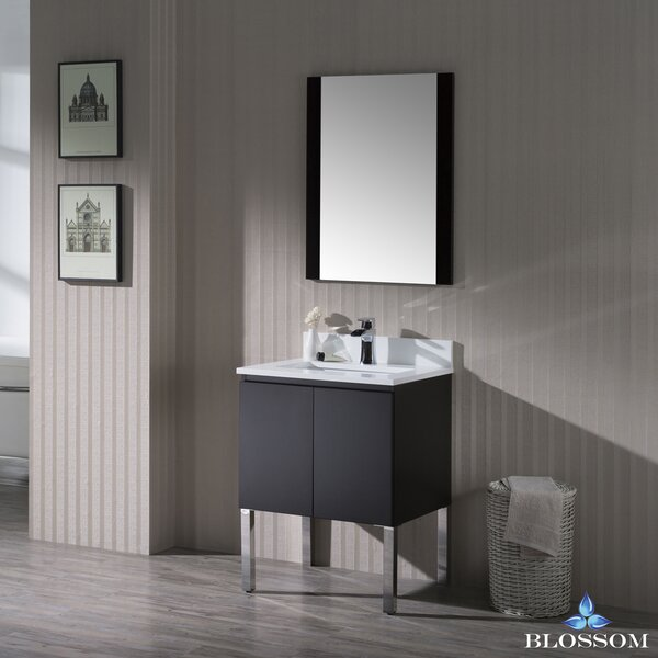 Maly Modern 24 Single Bathroom Vanity Set with Mirror