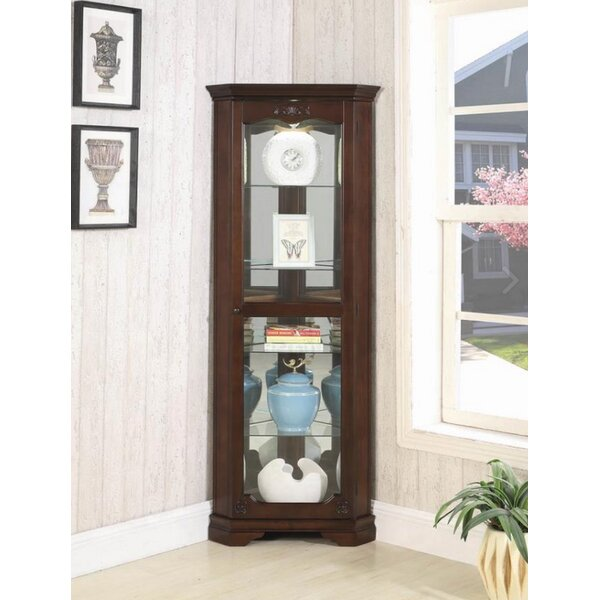 Braintree Lighted Curio Cabinet by Darby Home Co