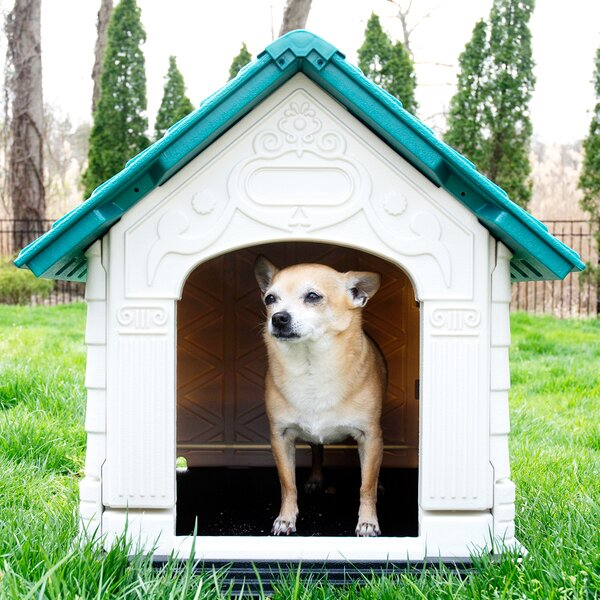 DazzleDen Elite Pet Villa Dog House by Iconic Pet