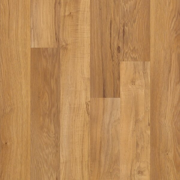 Shaw Laminate Flooring Youll Love