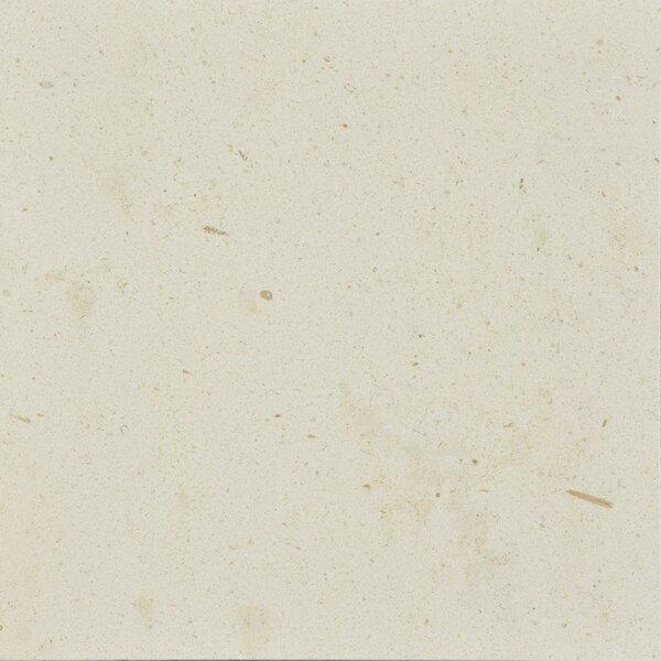 Osso 12 x 12 Limestone Field Tile in Creamy Latte