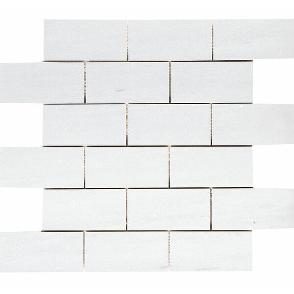 Naples Marble 2 x 4 Stone Mosaic Tile in White Honed by Parvatile