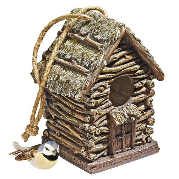 Backwoods 7 in x 6 in x 5.5 in Birdhouse by Design Toscano