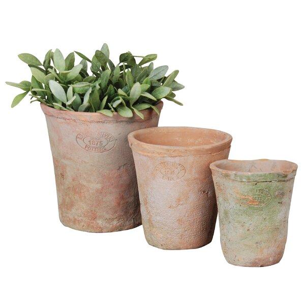 3 Piece Terracotta Pot Planter Set (Set of 3) by EsschertDesign