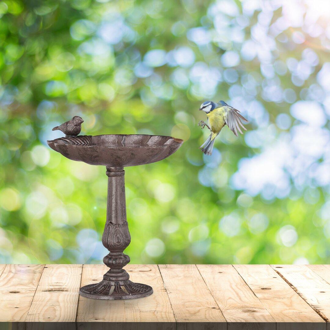 Lanford Bird Bath