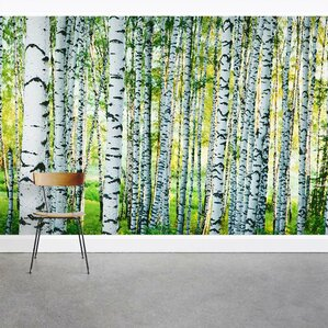 Spring Birch Tree Forest 8u0027 X 144 Part 24