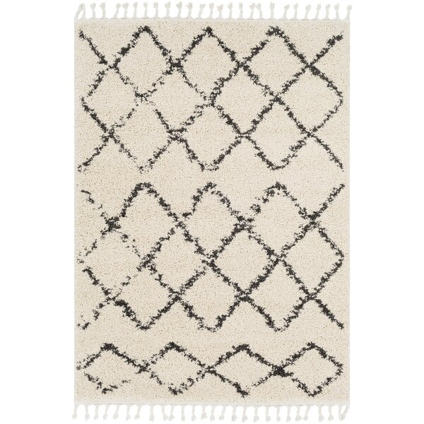 Roger Modern Bohemian Rectangle Ivory/Brown Area Rug by Langley Street