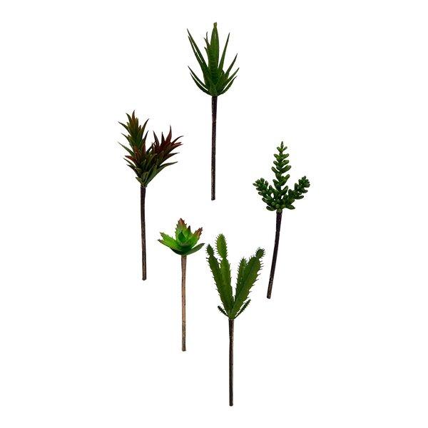 5 Piece Succulent Stem Set by Wrought Studio