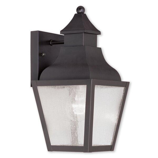 Gahagan 1-Light Outdoor Wall Lantern by Alcott Hill