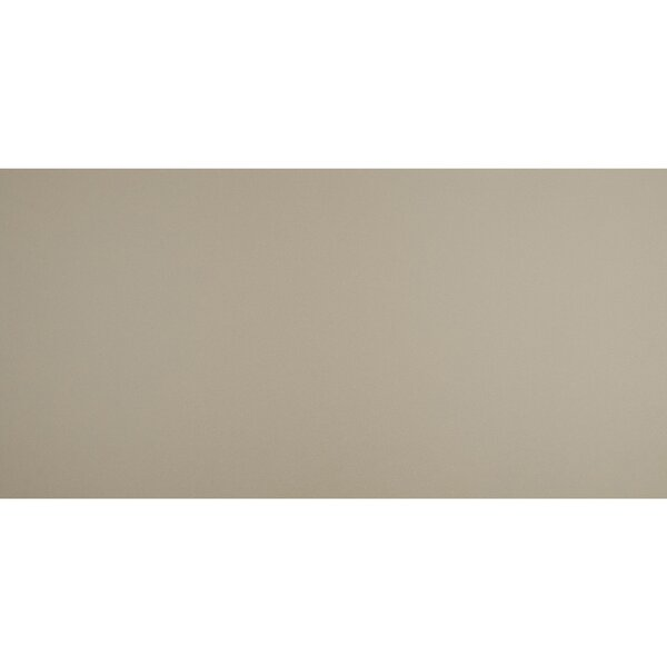 Aledo 24 x 48 Porcelain Field Tile in Tailor Beige by Itona Tile
