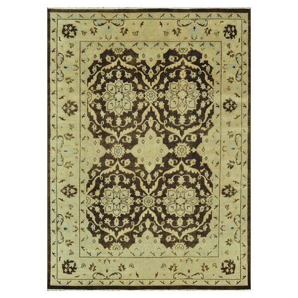 Kirtley Hand-Knotted Brown/Light Green Area Rug by Charlton Home