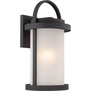 Find for Carrie 1-Light Outdoor Wall Lantern By Darby Home Co