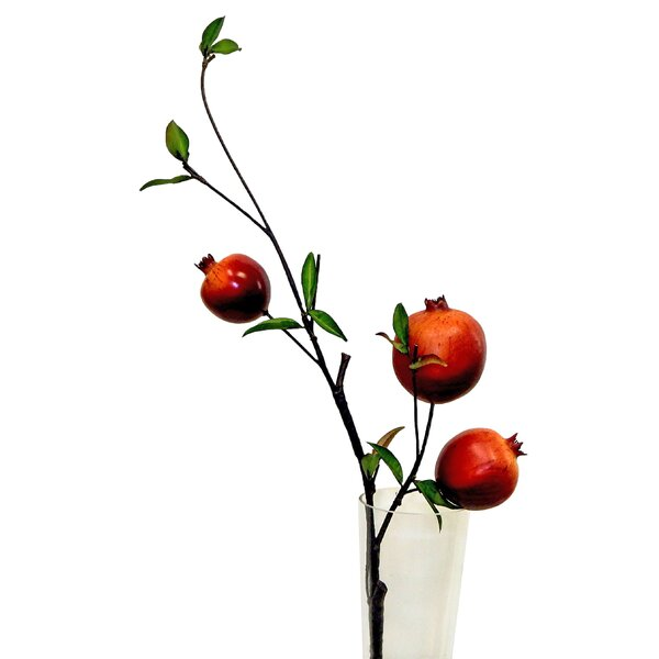 Pomegranate Spray Floral Arrangement in Vase by Gracie Oaks