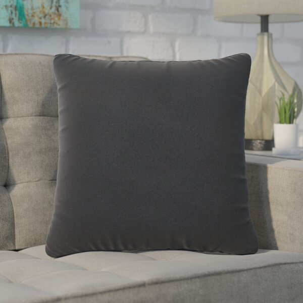 Pellot Indoor/Outdoor Throw Pillow (Set of 2) by Brayden Studio