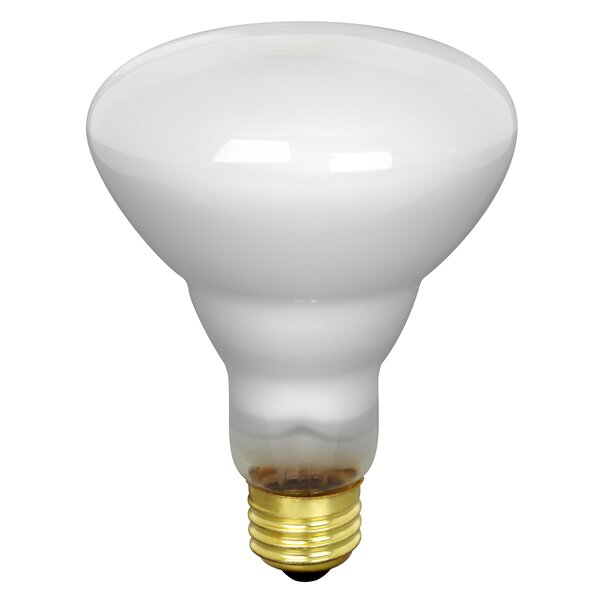 65W Fluorescent Light Bulb by FeitElectric