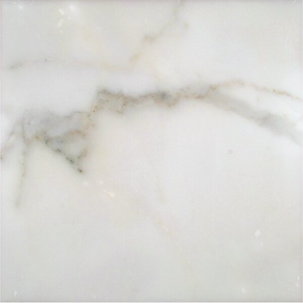 12 x 12 Marble Field Tile in Calacatta Gold by MSI
