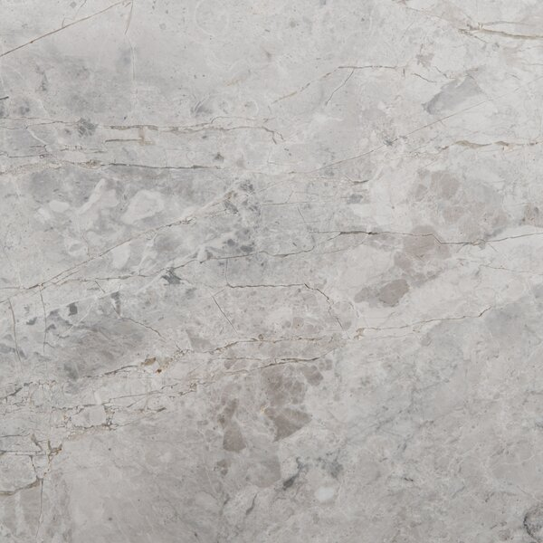 6 x 6 Marble Floor Tile in Silver by Emser Tile
