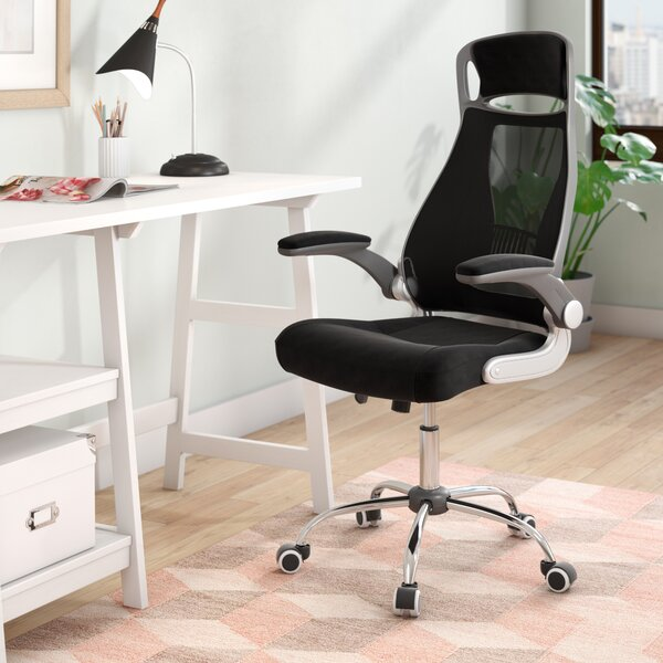 Loesing Ergonomic Mesh Office Chair by Ebern Designs