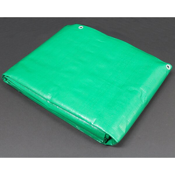 8 Ft. W x 20 Ft. D Tarp by King Canopy