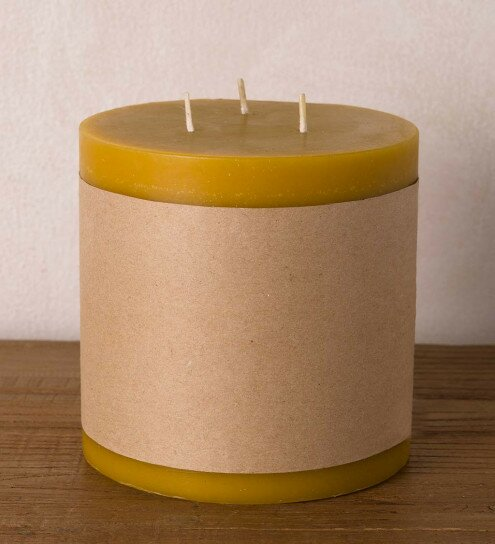 All Natural Scented Pillar Candle by World Menagerie