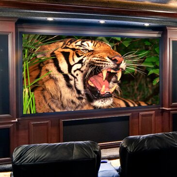 Clarion Fixed Frame Projection Screen by Draper